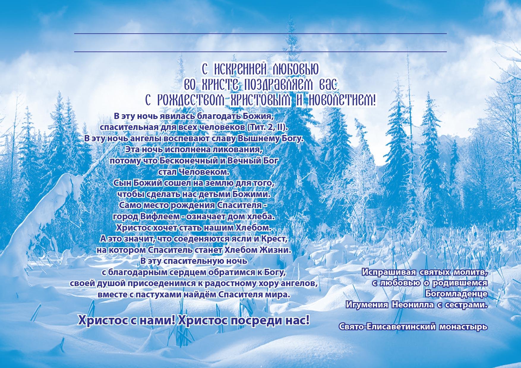Рождество 2019 год Свято-Елисаветинский монастырь Украина, Запорожская область, Ореховский район, пгт Камышева